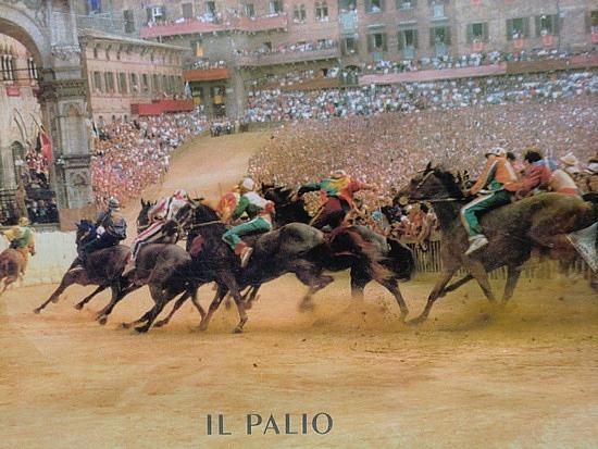 1.1284033820.the-palio