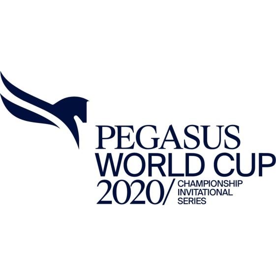 Pegasus 2020 Logo